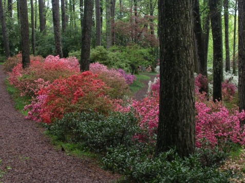 Callaway Gardens, GA